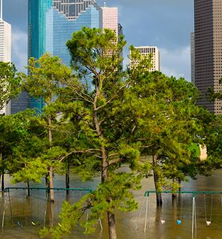 Flooded Houston park